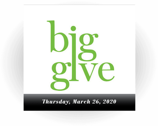 slide image for Big Give